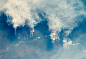 Use of sugar in Brazil could help accelerate slashing and burning in the Amazon rainforest. Photo: NASA Earth Observatory