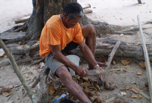 A Brazilian man breaking babaçu nuts.